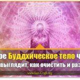 Буддхическое тело