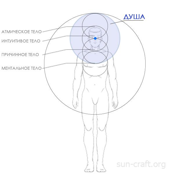 Тела человека - Дух, Душа и Тело