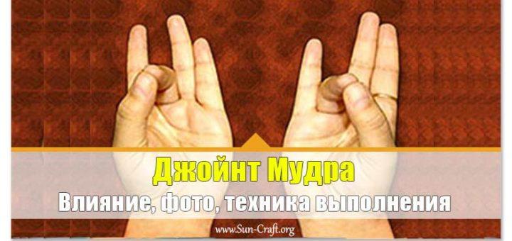 Джойнт Мудра